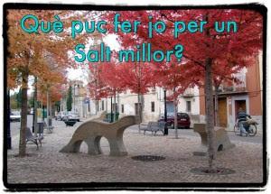SALT_MILLOR