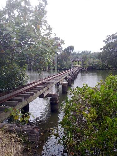 Cane Bridge (4 of 6)