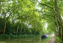 4-passenger Alegria, moored in a shady spot on the 300-year-old Canal du Midi in the south of France.