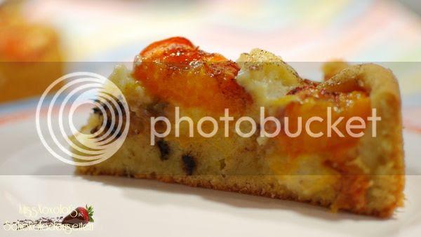 Marillenkuchen mit Puddingfüllung