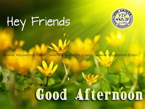 Good Afternoon Quotes For Friends