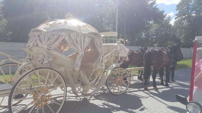Pod szpitalem w Tczewie pojawiła się wczoraj złota karoca