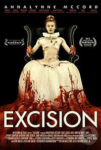 Excision excision_poster.jpg