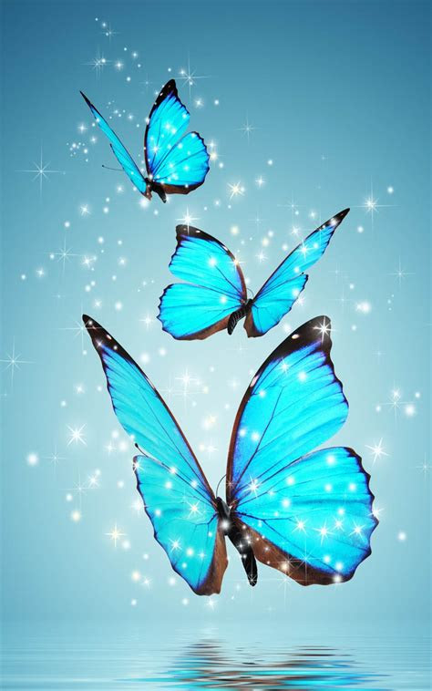 magical blue butterfly   hd mobile wallpapers