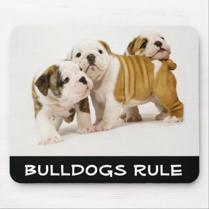Cute Bulldogs Rule Puppy Dogs Playing Mousepad