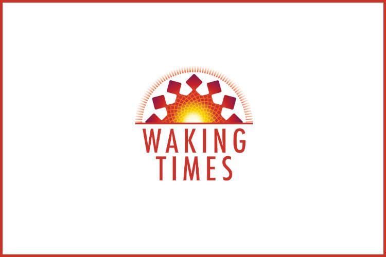 Holding Hands Empathy Tolerance