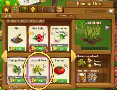 Upland Rice