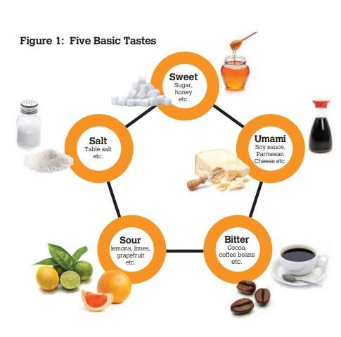 five basic tastes