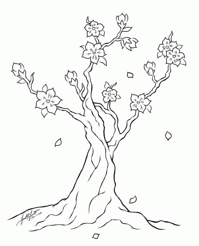 100 Gambar Bunga Sakura Hitam Putih  Paling Keren