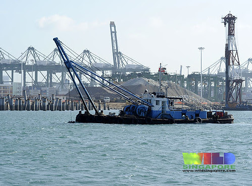 Reclamation at Pasir Panjang port