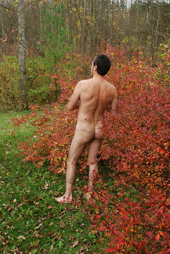 Naked in the barberry bushes