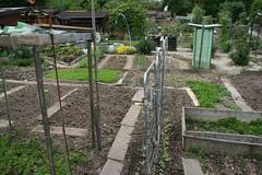 basel garden 024