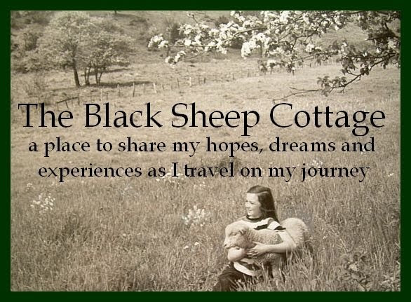 Quotes About Like Sheep 49 Quotes