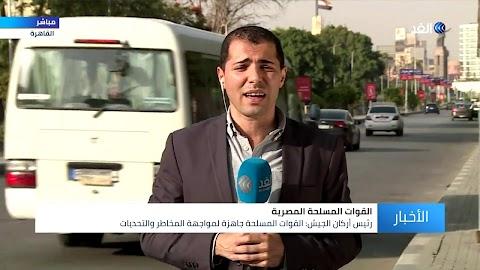 شجرة الاركان في مصر
