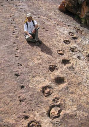 El paleontólogo argentino Pablo Gallina, junto a unas huellas de dinosaurio descubiertas en el sur de Bolivia. (Foto: EFE)