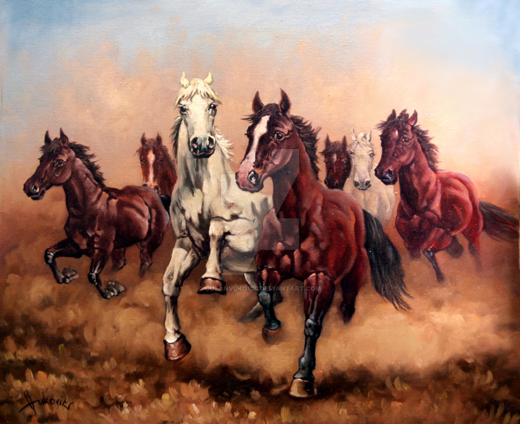 Beautiful Seven Horses 7 White Horse Wallpaper Hd Free Download Images