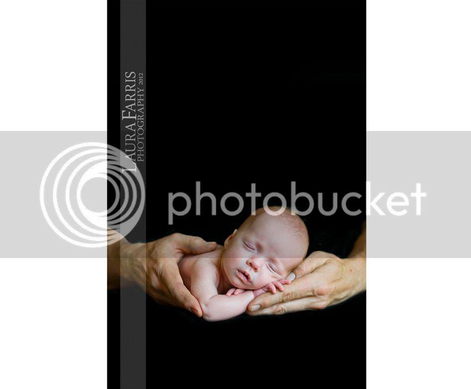 baby portraits boise idaho