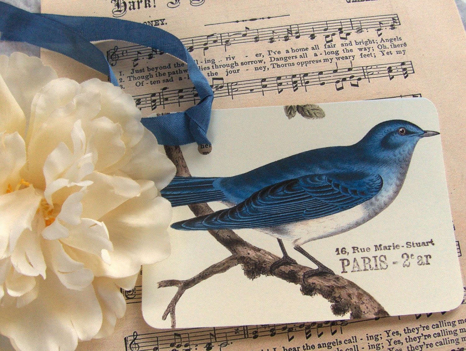 blue bird tags