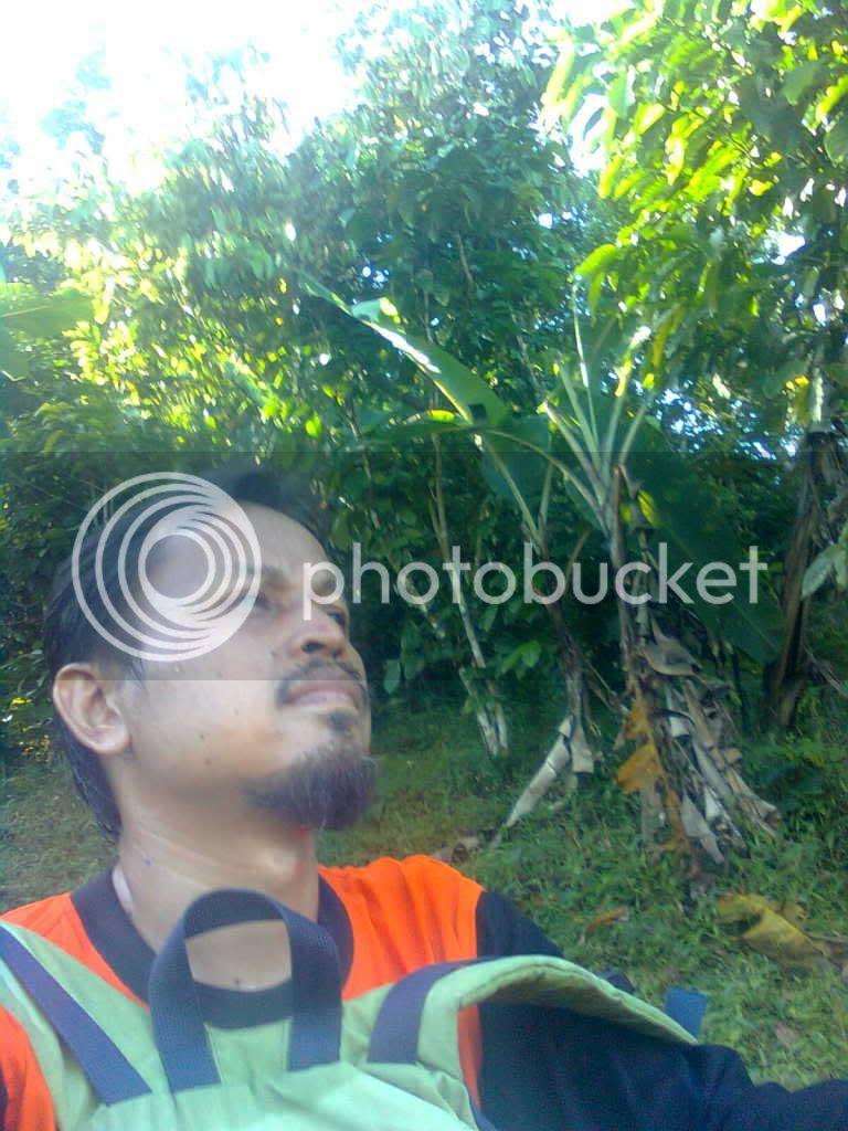 Mendaki Gunung Pulo Sari Pandeglan