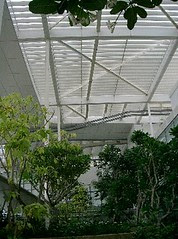 New National Library4