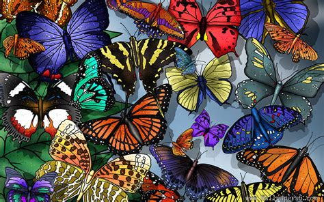 painting butterflies wallpaper cool wallpapers