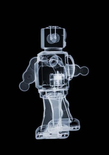 Robot (b)