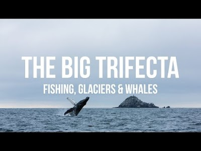 Gone with the Wynns videos: Fishing, Glaciers & Whales, Our Gas RV Experience, Paddleboarding Portage - Glaciers & Icebergs and 10 Brilliant Gifts You'll Want to Keep for Yourself
