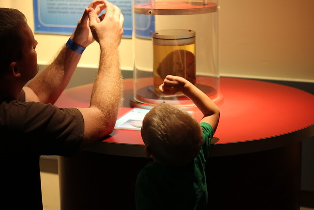 Visiting the Science Center