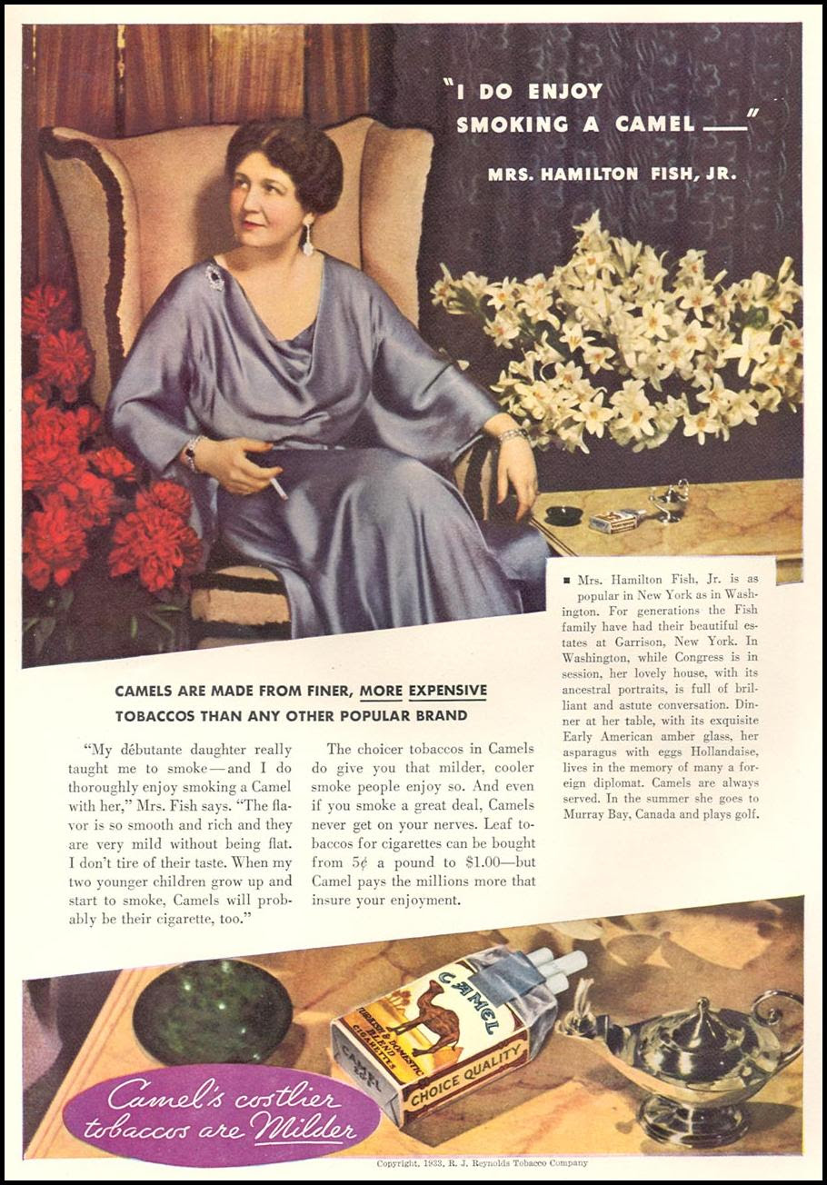 CAMEL CIGARETTES GOOD HOUSEKEEPING 12/01/1933 p. 102