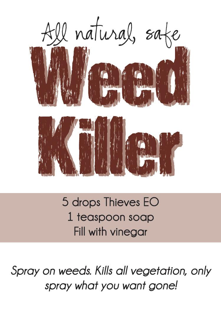 DIY All Natural Safe Thieves Weed Killer printable