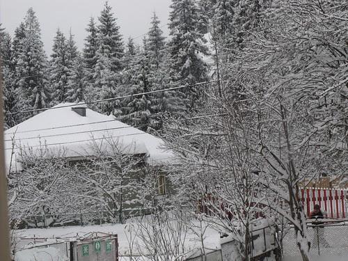 ninge 006 by martamaghiar