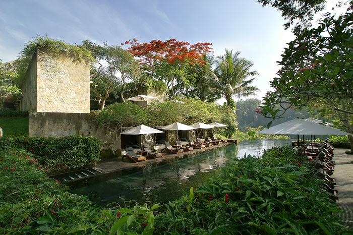 maya ubud lagoon pool
