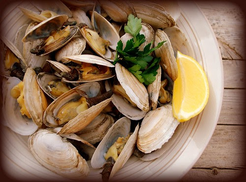 Steamers white bowl