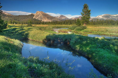 tuolumne meadows - soda springs por Molly Wassenaar