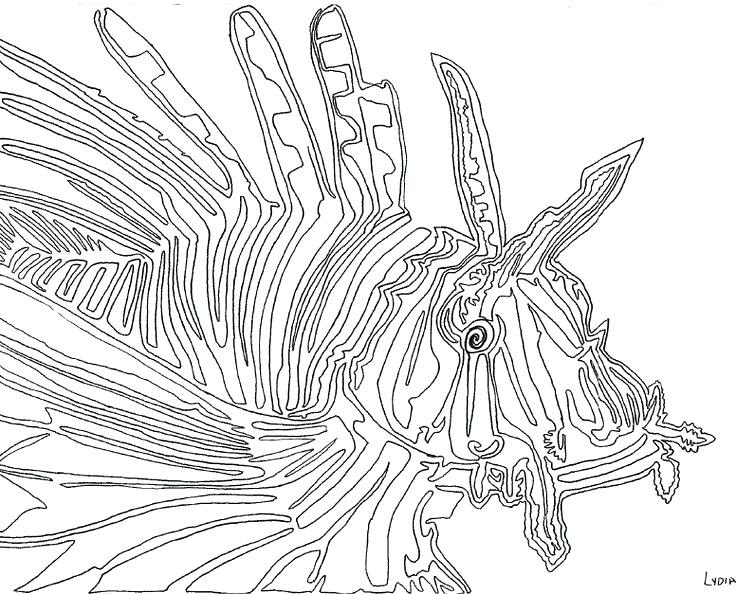 Lionfish Coloring Page at GetDrawings | Free download