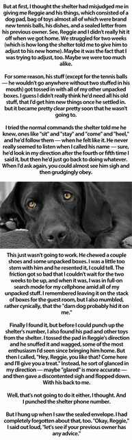 A storey that volition touching on your hearts  as well as should hold upwards shared as well as read past times many Influenza A virus subtype H5N1 Touching Story About a Simple Dog...