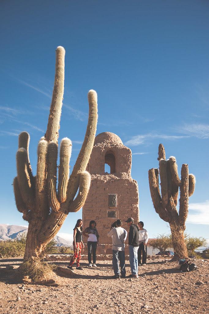 The Saguaro Cactus Argentina Jujuy Province Humahuaca