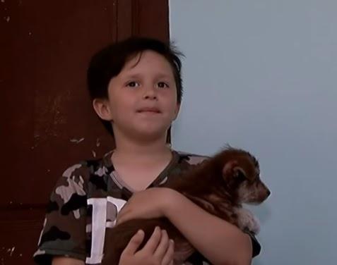 Con apenas 7 años salva la vida de un cachorro que era cruelmente maltratado por otros niños