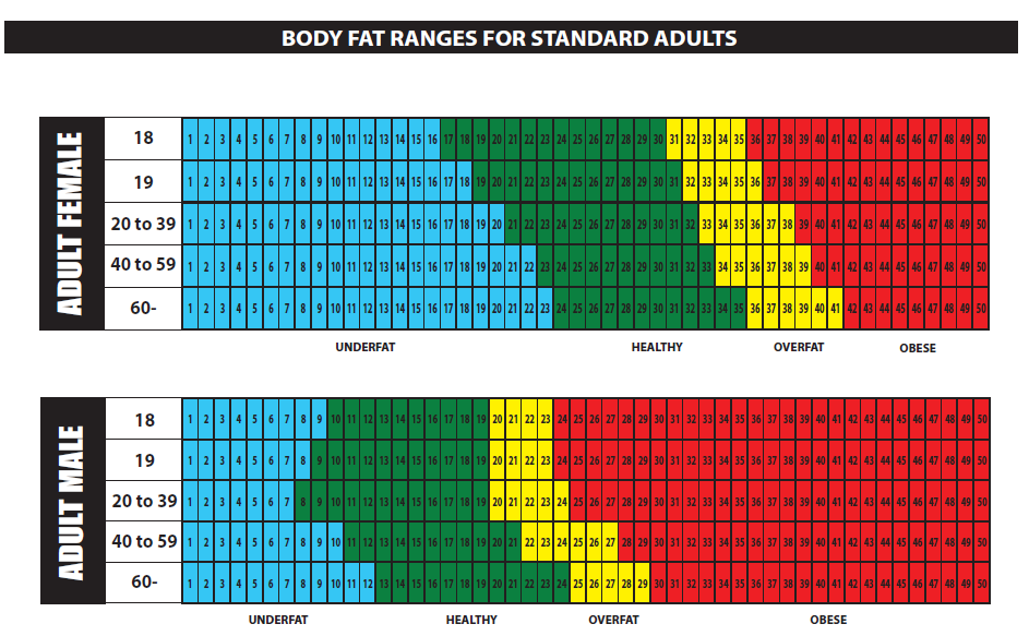 ideal body fat percentage female athlete