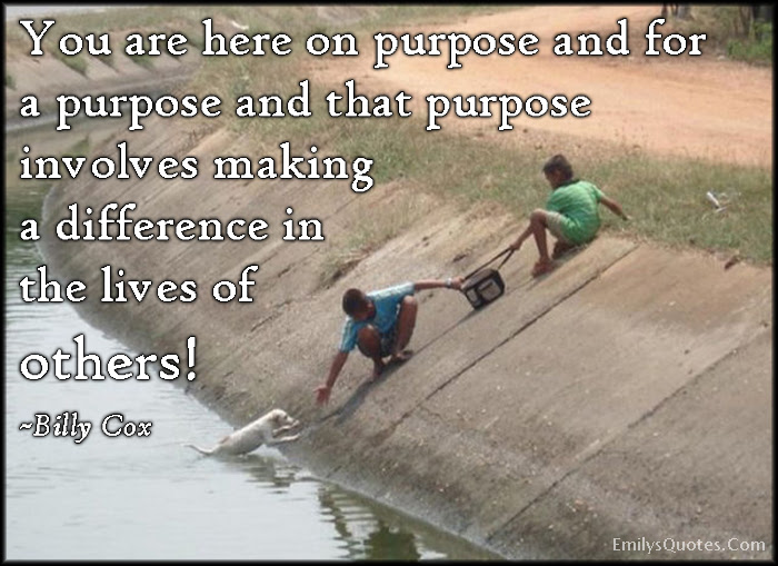 You Are Here On Purpose And For A Purpose And That Purpose Involves