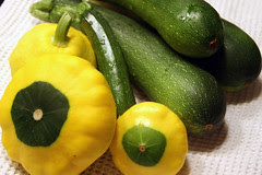 harvest 1 - summer squash