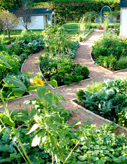 Potager Garden traditional landscape