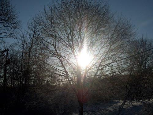 Sunrise_22009