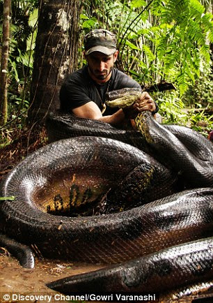 Paul Rosolie allowed himself to be eaten alive by a giant snake in a documentary for the Discovery Channel