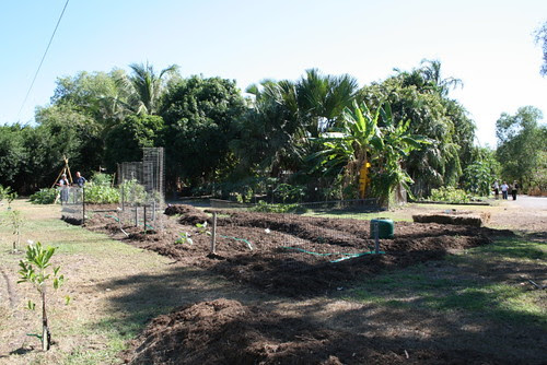 Garden Expansion and development