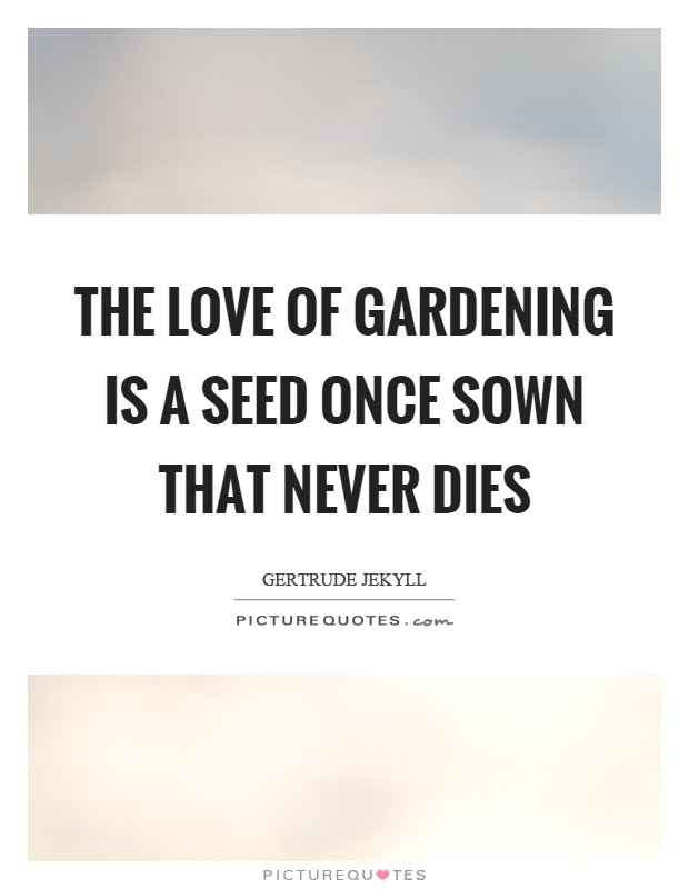 Love Never Dies Quotes Sayings Love Never Dies Picture Quotes