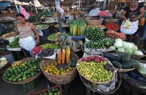 """El sitio en línea """"El Export Helpdesk"""" fue creado porque los consumidores europeos están interesados en los productos nicaragüenses, así como los empresarios de este país centroamericano en el mercado europeo.EFE"""