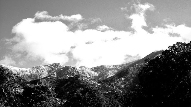 Looking up towards Crest Trail