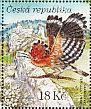 Eurasian Hoopoe Upupa epops