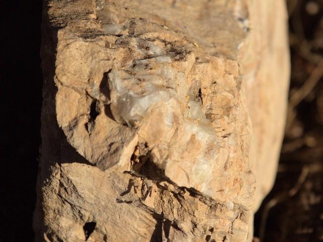 Quartz deposit in rock 20130618